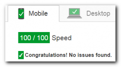 Page Speed 100/100 Mobile